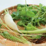 【春の七草】種類は? / 七草粥を食べる意味は? / 七草粥の作り方は?