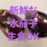 【水茄子】新鮮なものはアクが少ないので、生食で食べると最高です。