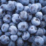 ブルーベリーを冷凍保存する簡単な方法【栄養的にも冷凍はおすすめ】