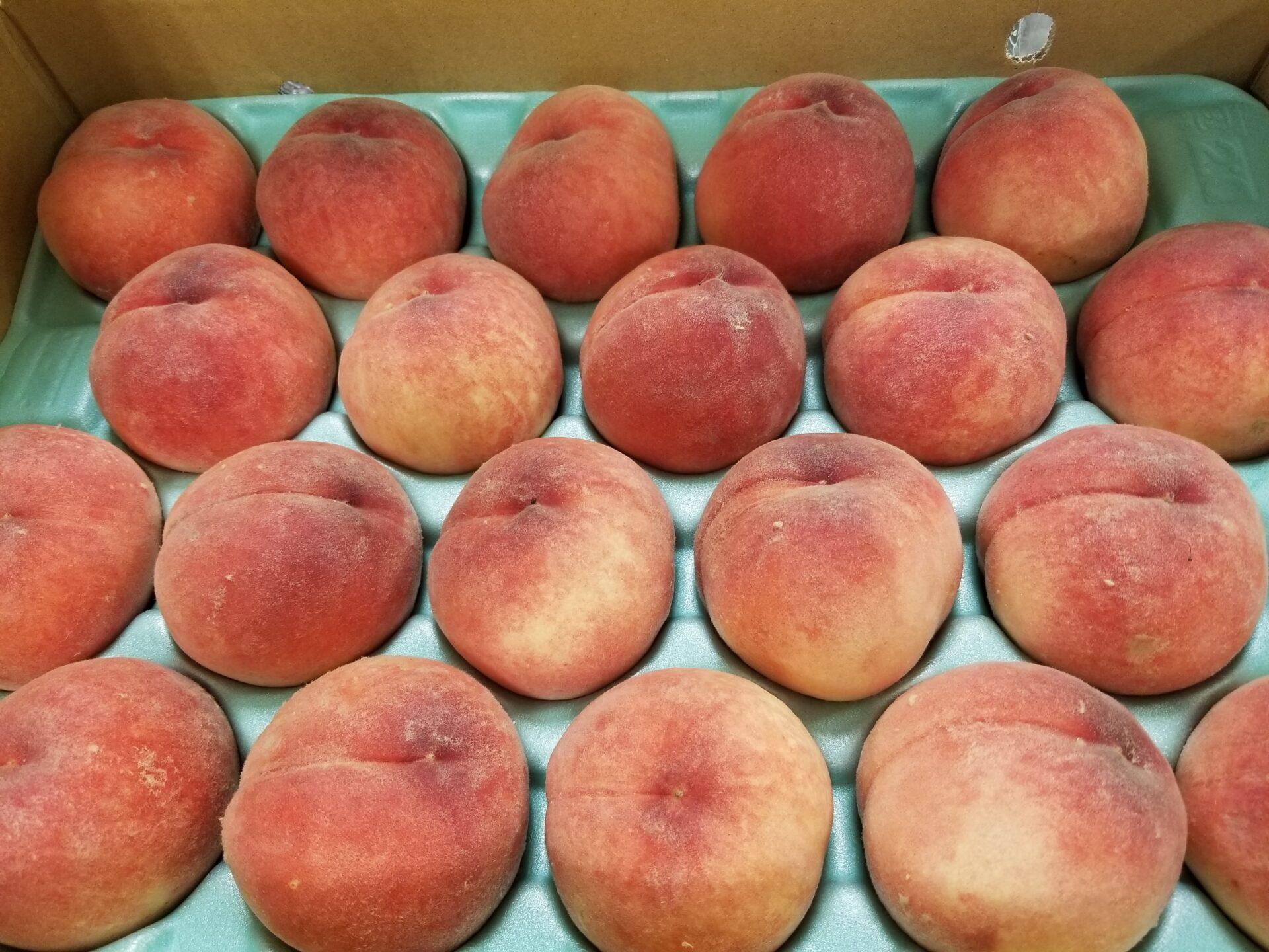まどか桃の特徴は?実際に食べてみた感想など。