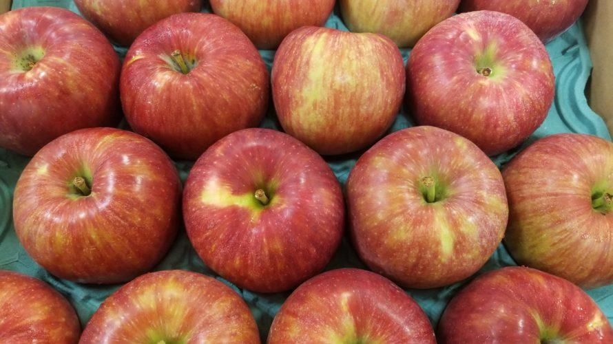 シナノレッド(りんご)の特徴/味や食感、時期などのポイントまとめ
