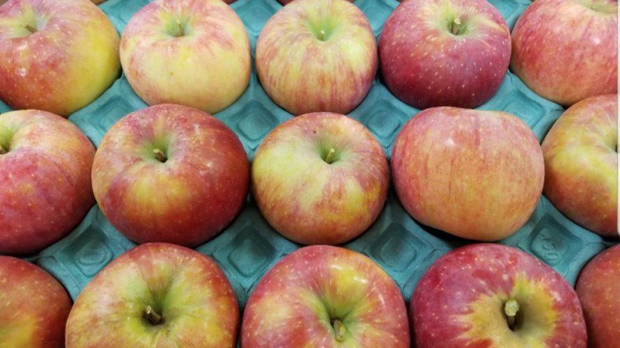 シナノリップの特徴/味や食感などを紹介【おすすめの高糖度りんご】