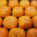 平核無柿と刀根早生柿の違いは?/平核無柿の栄養素は?