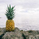 【パイナップル】追熟しないけど、甘さを最大に引き出せる方法。