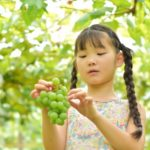果物や野菜の皮についている白い粉の正体は何?/食べても大丈夫?