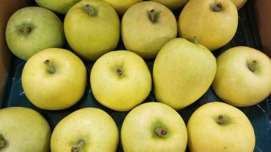メルシー(りんご)の特徴/味は?食感は?時期は?/糖度も計測