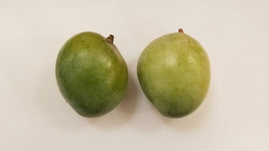 キーツマンゴーって普通のマンゴーと違う?/ 味は? 食べ頃は? どこで買える?
