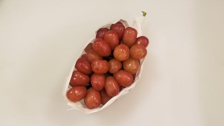 シャトールージュぶどうの特徴/味は?種はある?皮ごと食べられる?