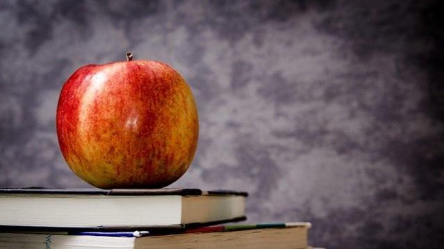 【果肉が赤いりんご】いろどり/ムーンルージュの特徴【実食レビューあり】