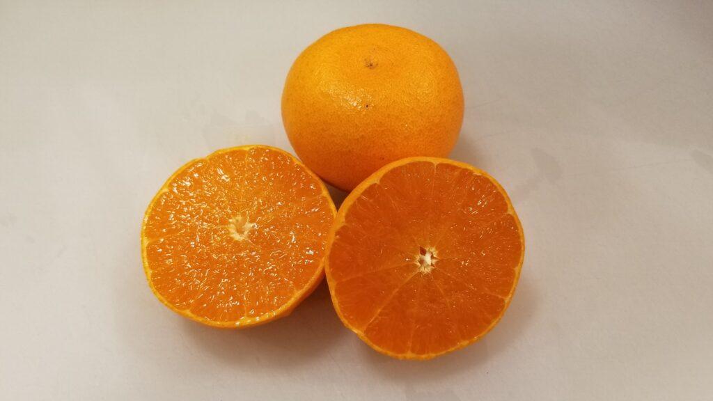 せとか 柑橘