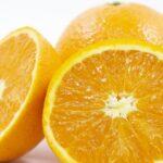 清見オレンジと清見タンゴールの違いは?【特徴の紹介/実食レビューあり】