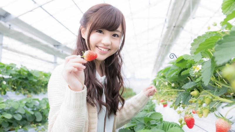 【簡単】美味しいイチゴの見分け方 / 5つのポイントをプロが丁寧に解説!