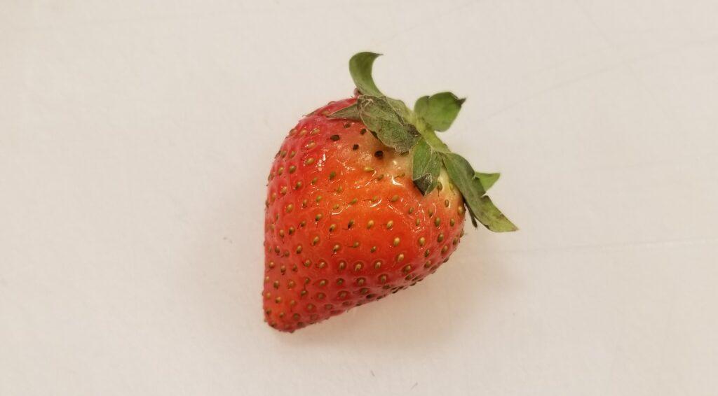 鮮度の悪いイチゴ