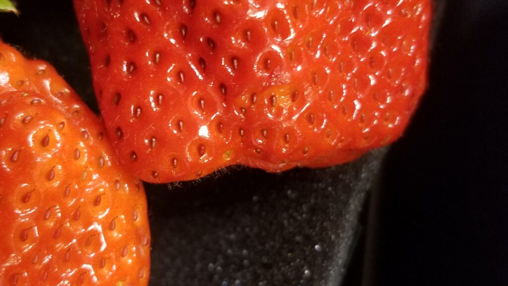 美味しいイチゴ 先端