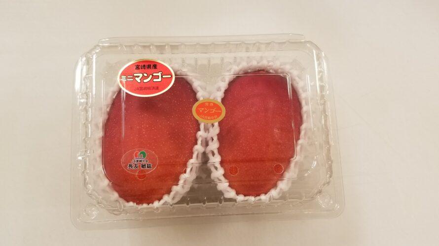 【糖度も計測】宮崎産ミニマンゴーと普通のマンゴーの違いを、プロが具体的に解説!