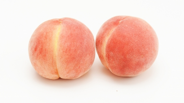 9月になっても美味しい桃はある?贈り物にしても大丈夫?