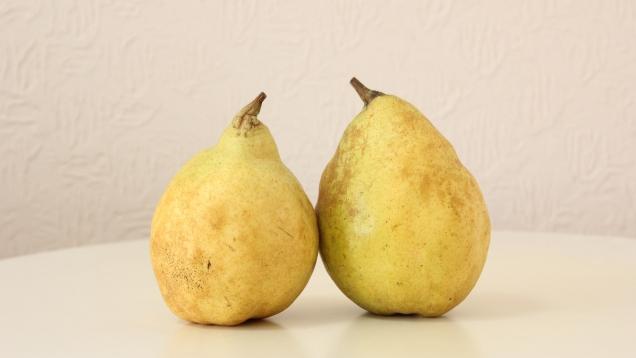 甘くておいしい西洋梨、人気品種ランキング!【贈り物にもおすすめ】